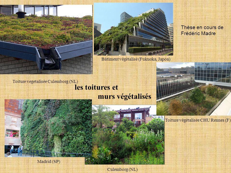 les toitures et murs végétalisés Thèse en cours de Frédéric Madre