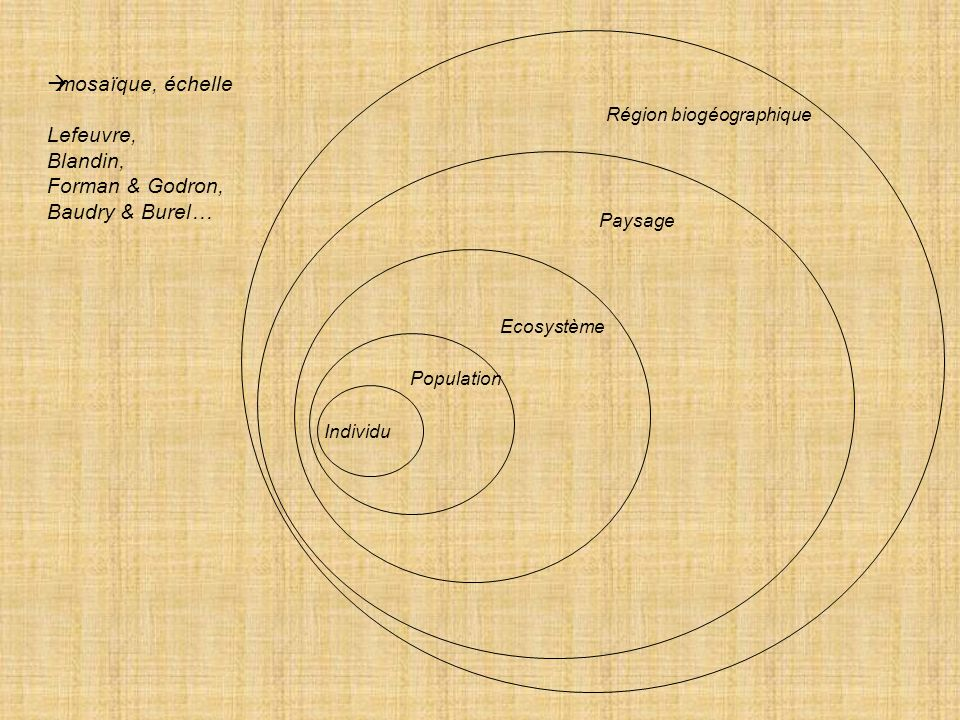 Forman & Godron, Baudry & Burel…