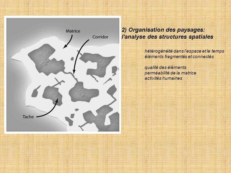 2) Organisation des paysages: l analyse des structures spatiales