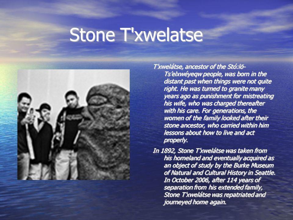Stone T xwelatse