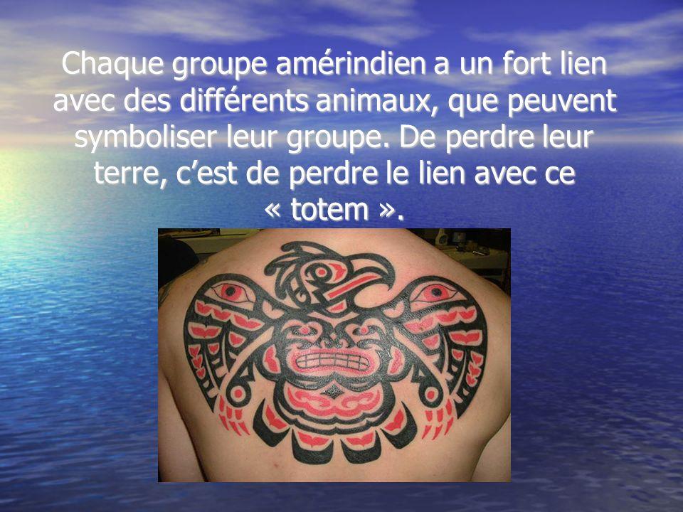 Chaque groupe amérindien a un fort lien avec des différents animaux, que peuvent symboliser leur groupe.