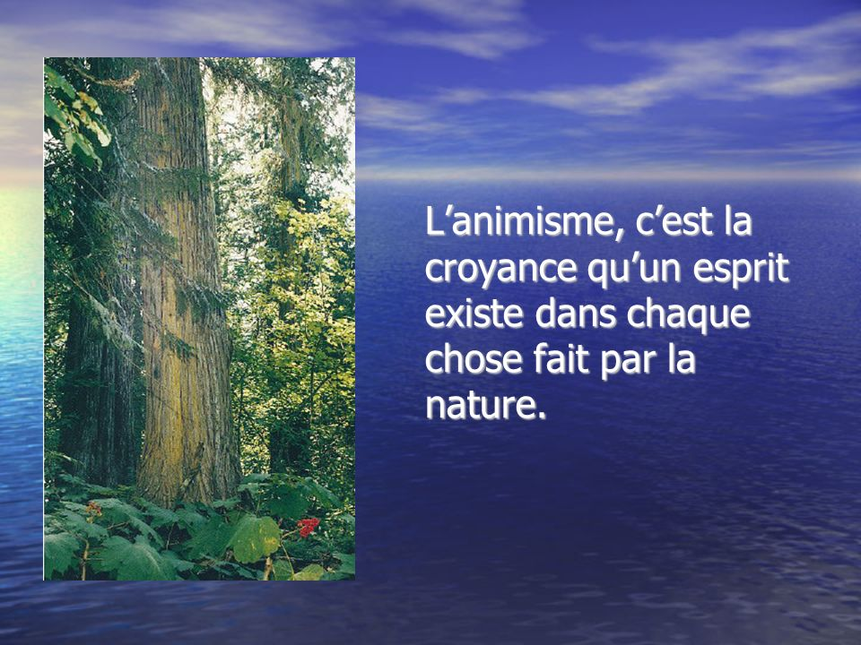 L'animisme, c'est la croyance qu'un esprit existe dans chaque chose fait par la nature.