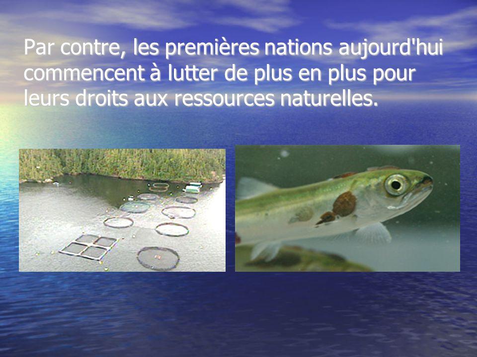 Par contre, les premières nations aujourd hui commencent à lutter de plus en plus pour leurs droits aux ressources naturelles.