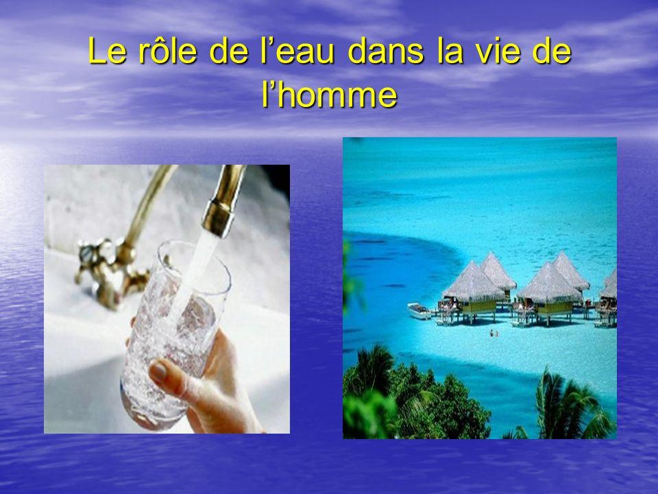 Le rôle de l'eau dans la vie de l'homme