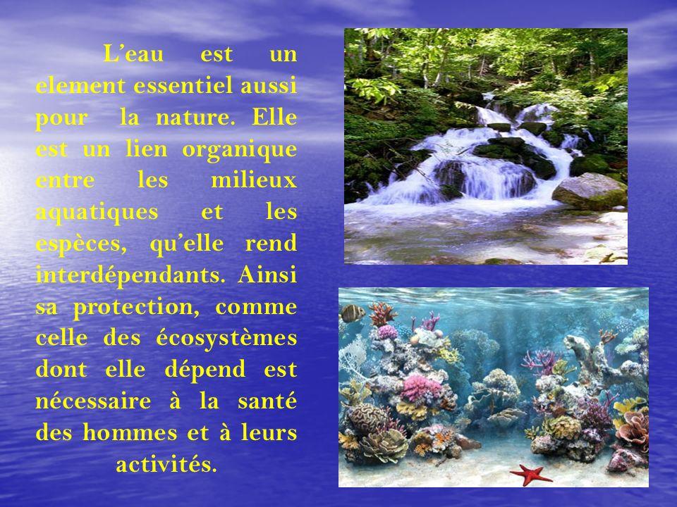 L'eau est un element essentiel aussi pour la nature
