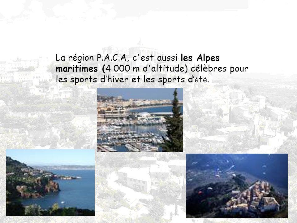 La région P.A.C.A, c est aussi les Alpes maritimes (4 000 m d altitude) célèbres pour les sports d'hiver et les sports d'été.