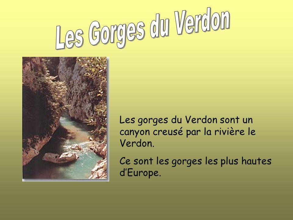 Les Gorges du Verdon Les gorges du Verdon sont un canyon creusé par la rivière le Verdon.