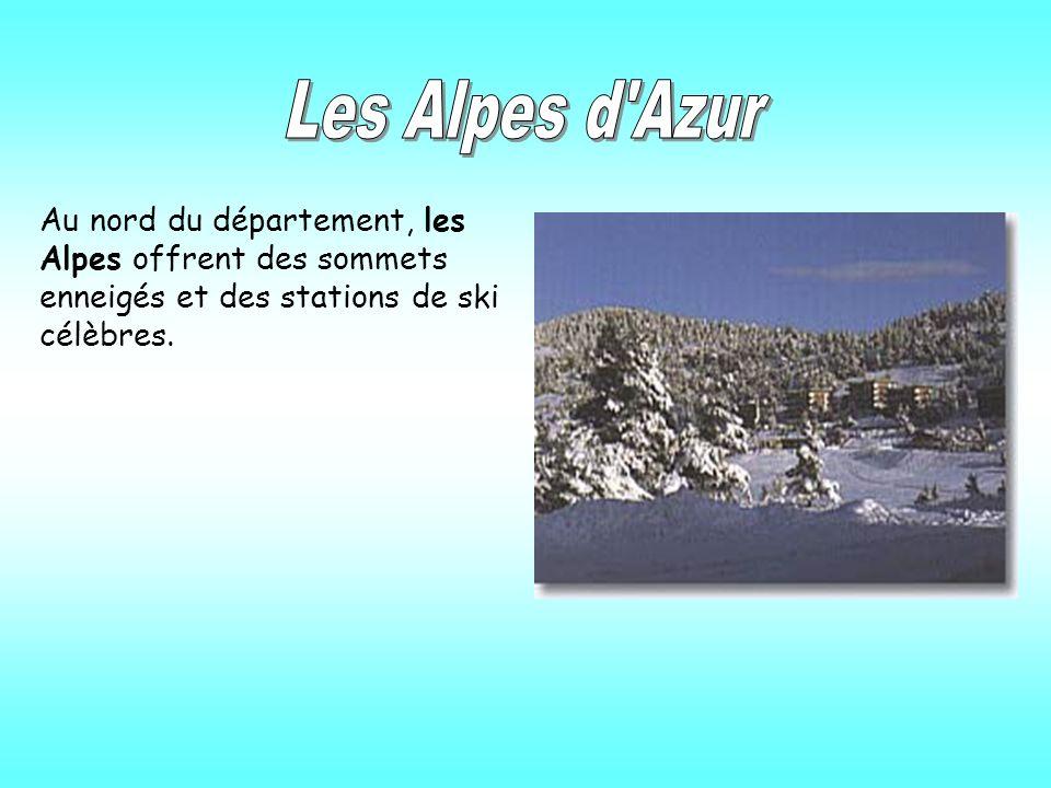 Les Alpes d Azur Au nord du département, les Alpes offrent des sommets enneigés et des stations de ski célèbres.