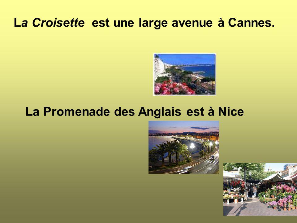 La Croisette est une large avenue à Cannes.