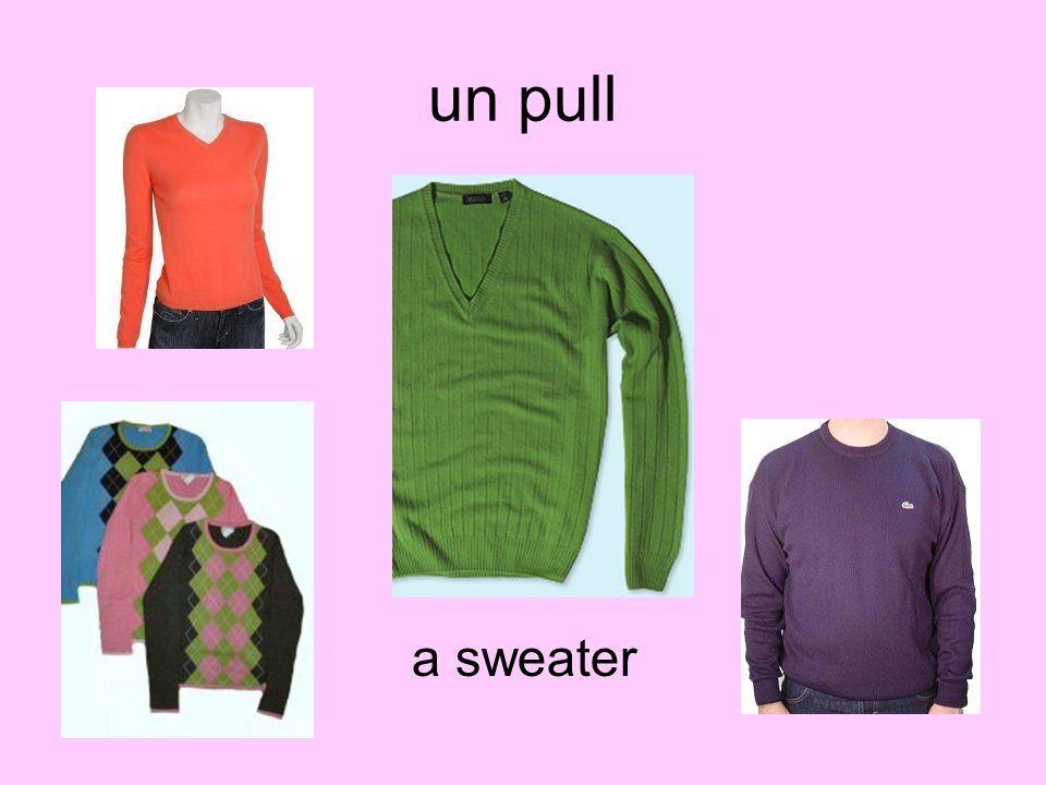 un pull a sweater
