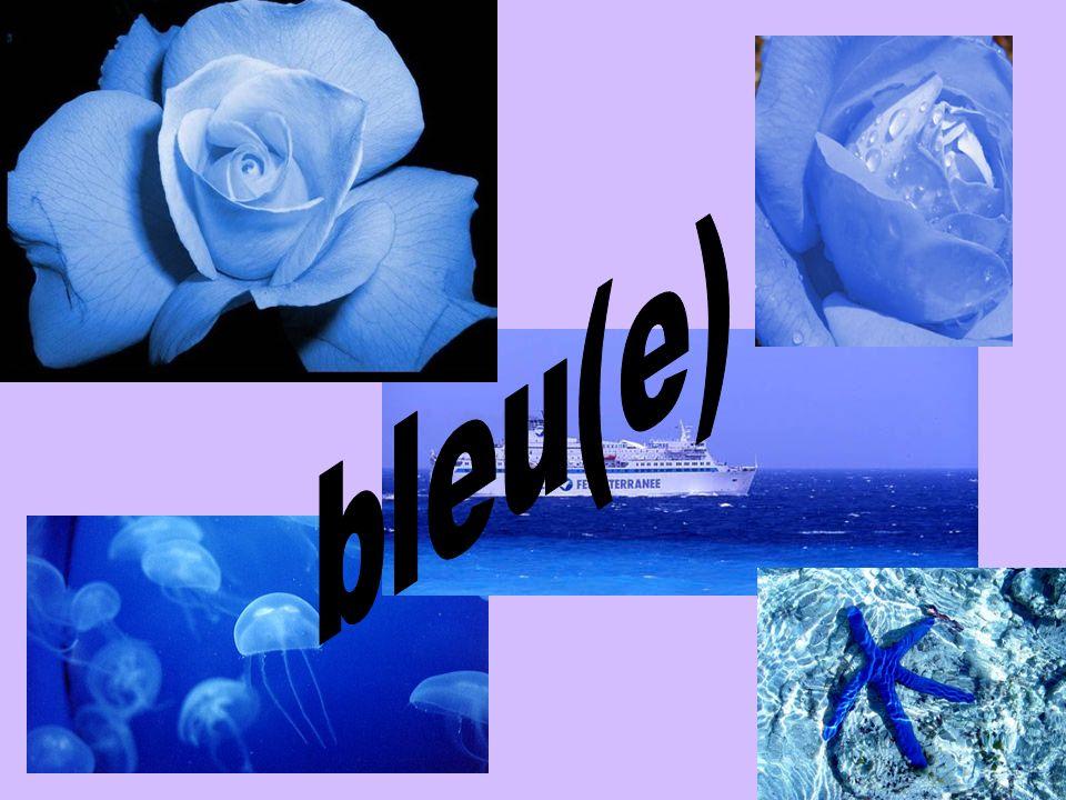 bleu(e)