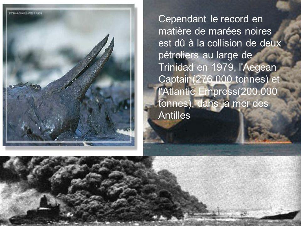 Cependant le record en matière de marées noires est dû à la collision de deux pétroliers au large de Trinidad en 1979, l Aegean Captain(276.000 tonnes) et l Atlantic Empress(200.000 tonnes), dans la mer des Antilles