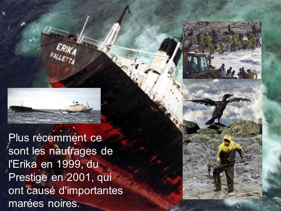 Plus récemment ce sont les naufrages de l Erika en 1999, du Prestige en 2001, qui ont causé d importantes marées noires.
