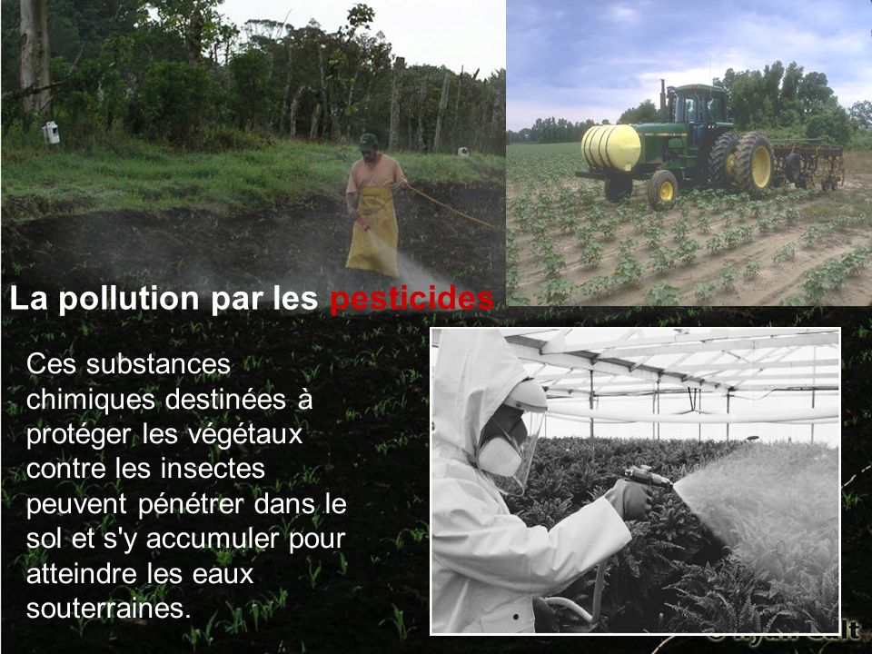 La pollution par les pesticides