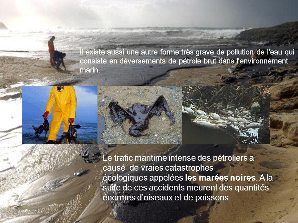 Il existe aussi une autre forme très grave de pollution de l'eau qui consiste en déversements de pétrole brut dans l environnement marin.