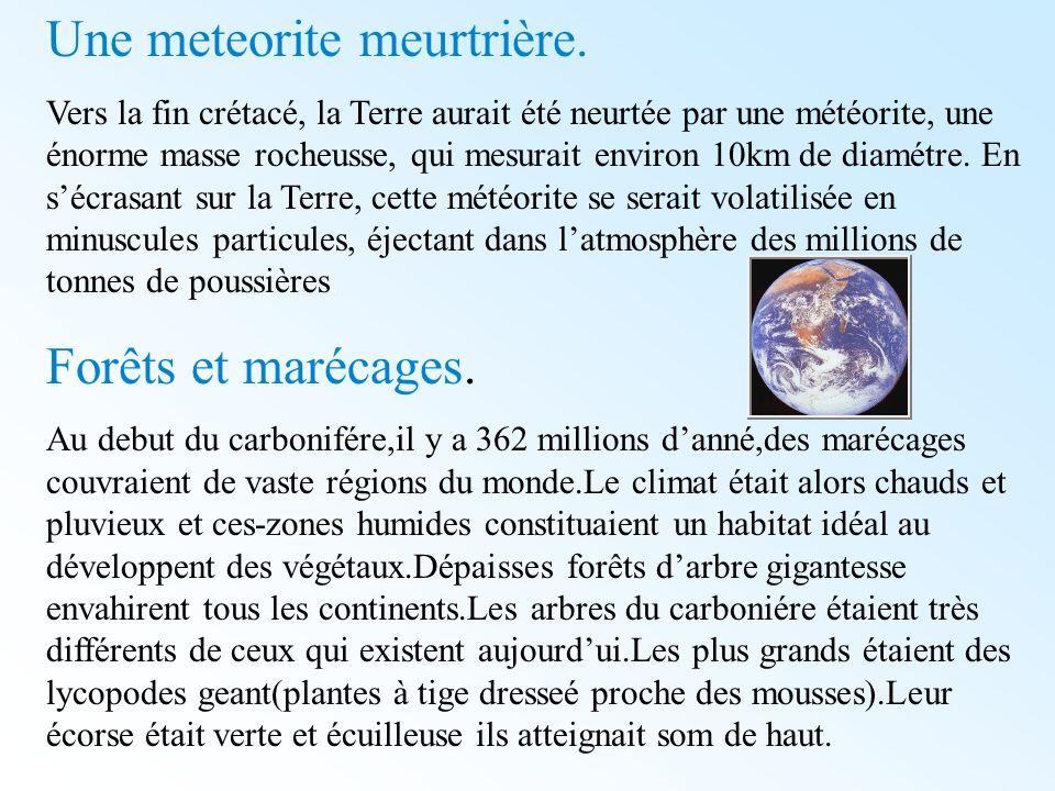 Une meteorite meurtrière.