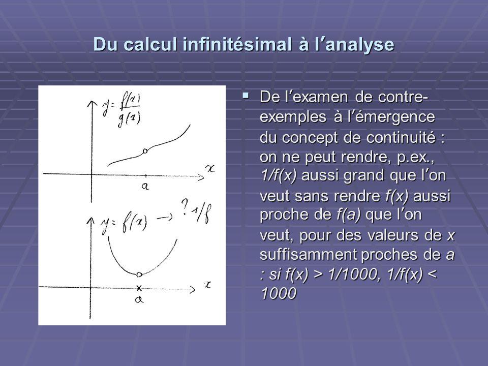 Du calcul infinitésimal à l'analyse