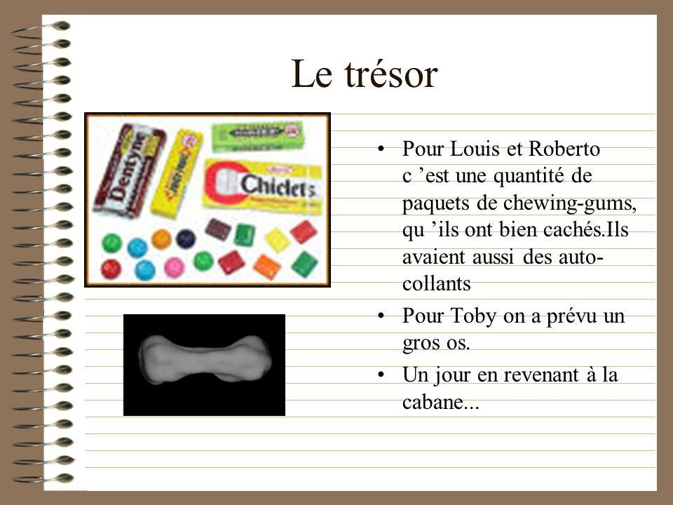 Le trésor Pour Louis et Roberto c 'est une quantité de paquets de chewing-gums, qu 'ils ont bien cachés.Ils avaient aussi des auto-collants.