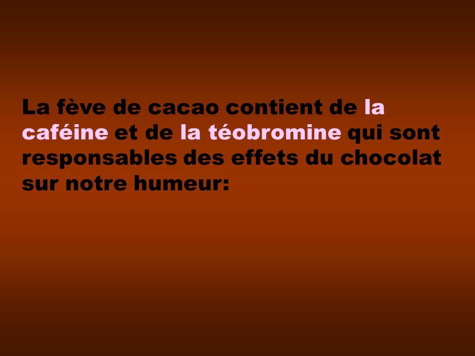 La fève de cacao contient de la caféine et de la téobromine qui sont responsables des effets du chocolat sur notre humeur: