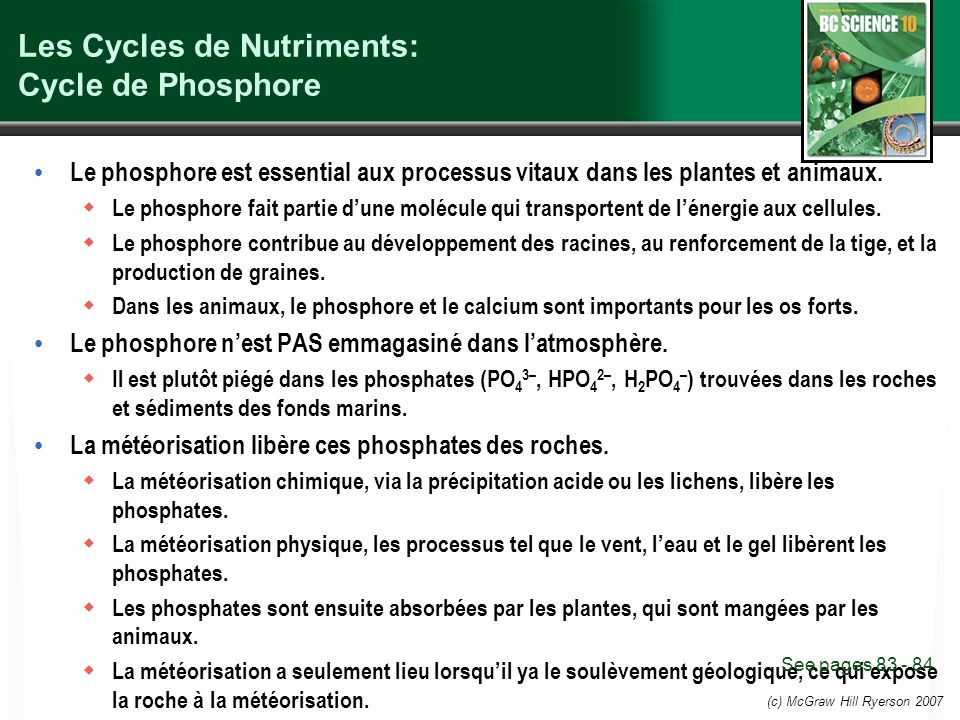 Les Cycles de Nutriments: Cycle de Phosphore