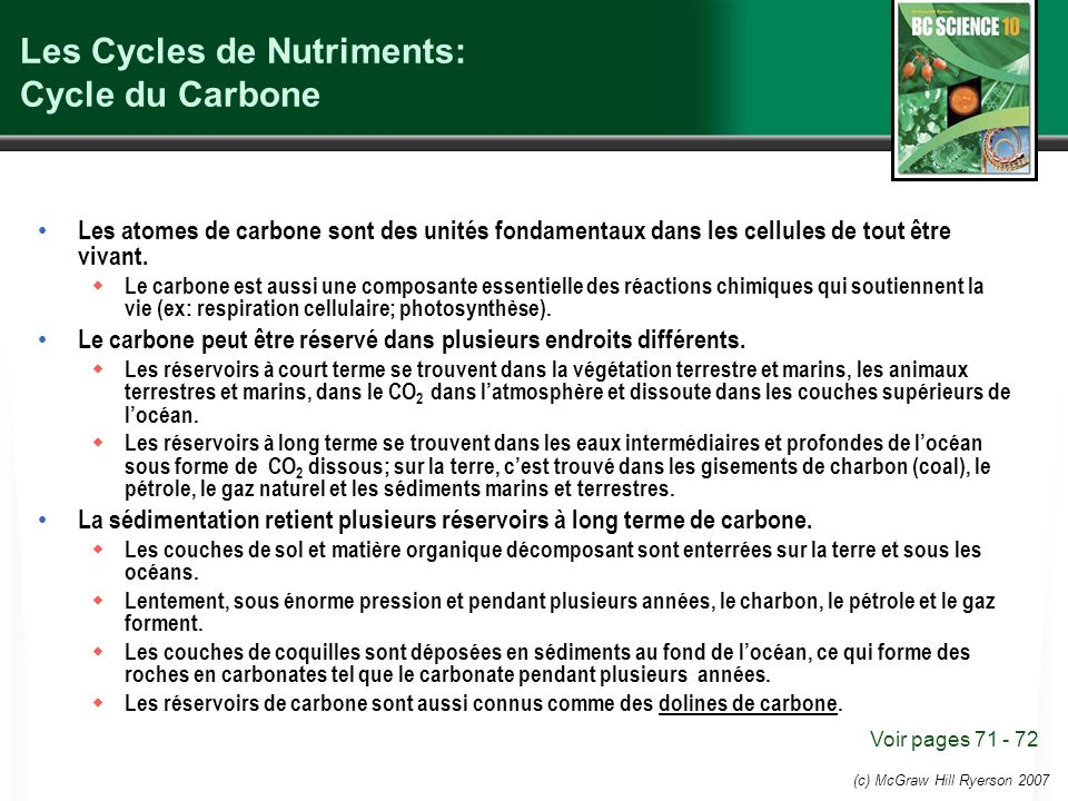 Les Cycles de Nutriments: Cycle du Carbone