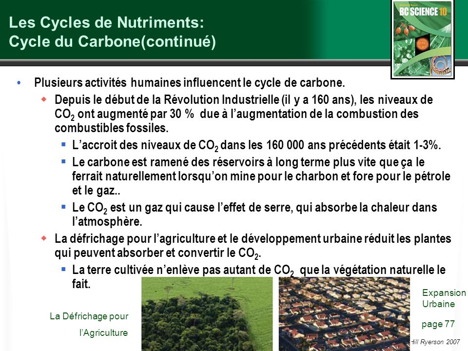 Les Cycles de Nutriments: Cycle du Carbone(continué)