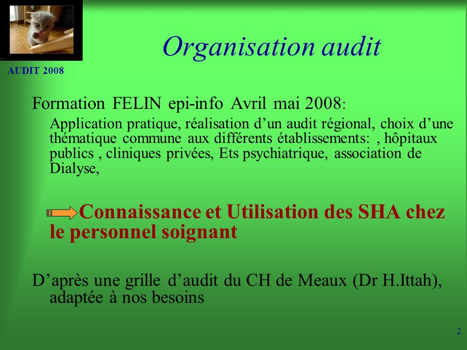 Organisation audit AUDIT 2008. Formation FELIN epi-info Avril mai 2008:
