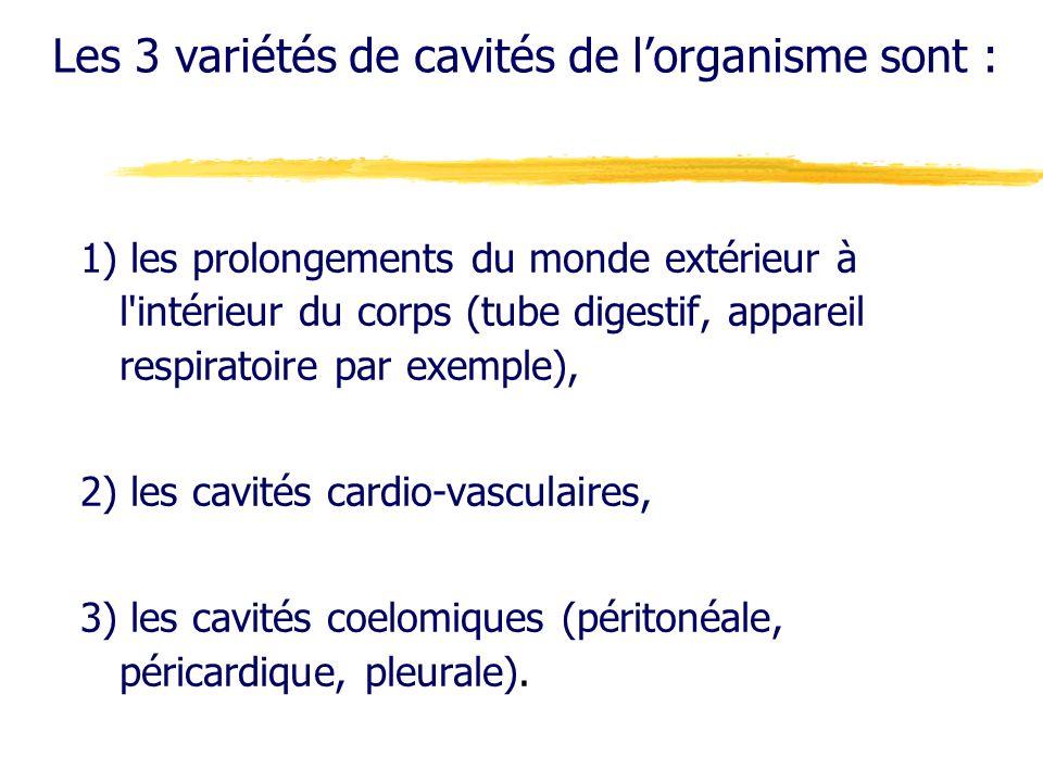 Les 3 variétés de cavités de l'organisme sont :