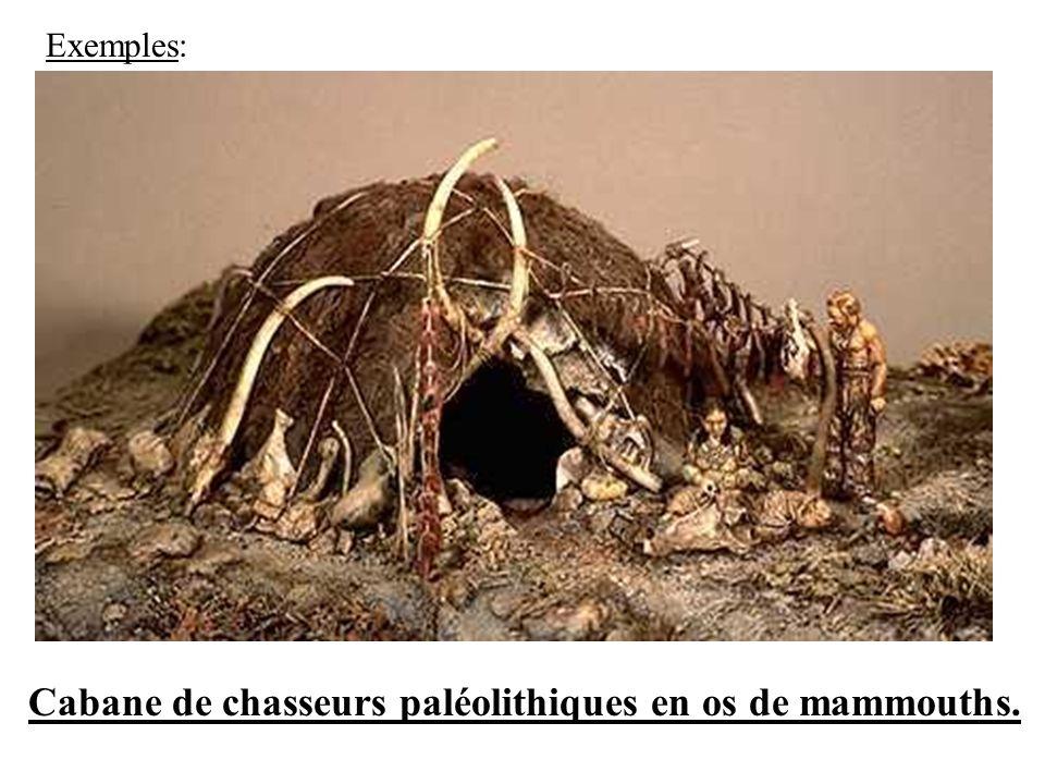 Cabane de chasseurs paléolithiques en os de mammouths.