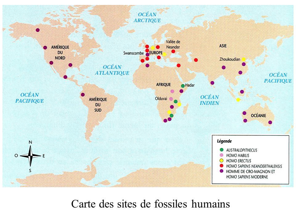 Carte des sites de fossiles humains