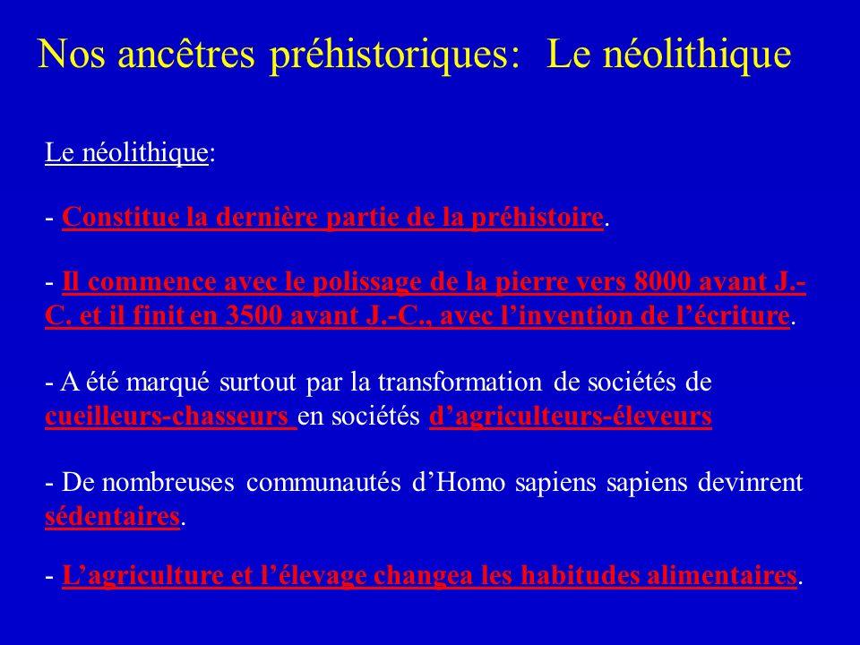 Nos ancêtres préhistoriques: Le néolithique