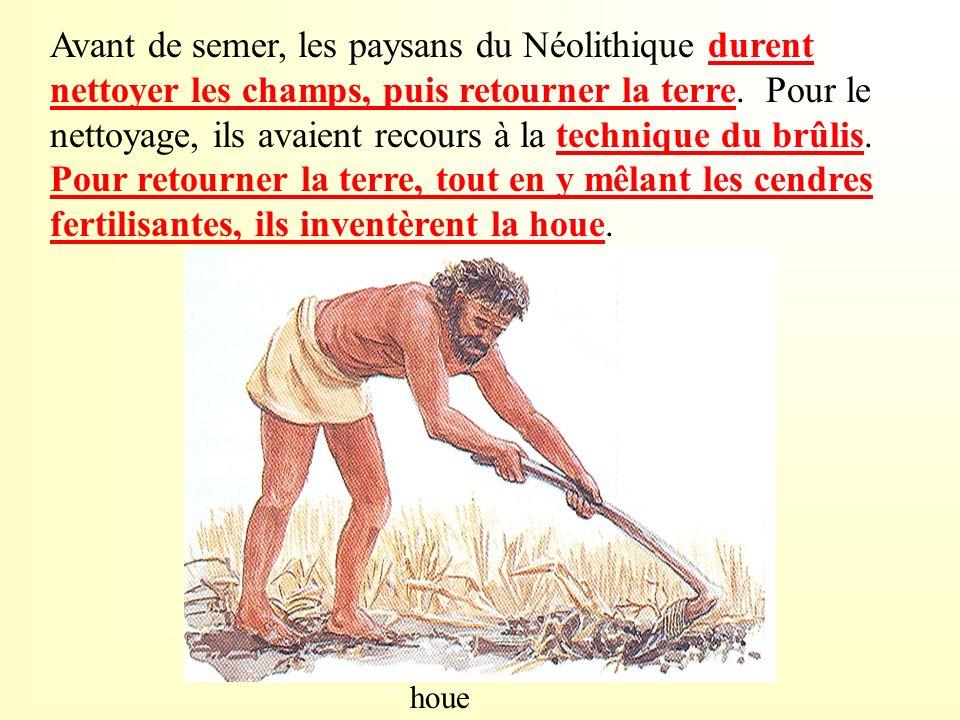 Avant de semer, les paysans du Néolithique durent nettoyer les champs, puis retourner la terre. Pour le nettoyage, ils avaient recours à la technique du brûlis. Pour retourner la terre, tout en y mêlant les cendres fertilisantes, ils inventèrent la houe.