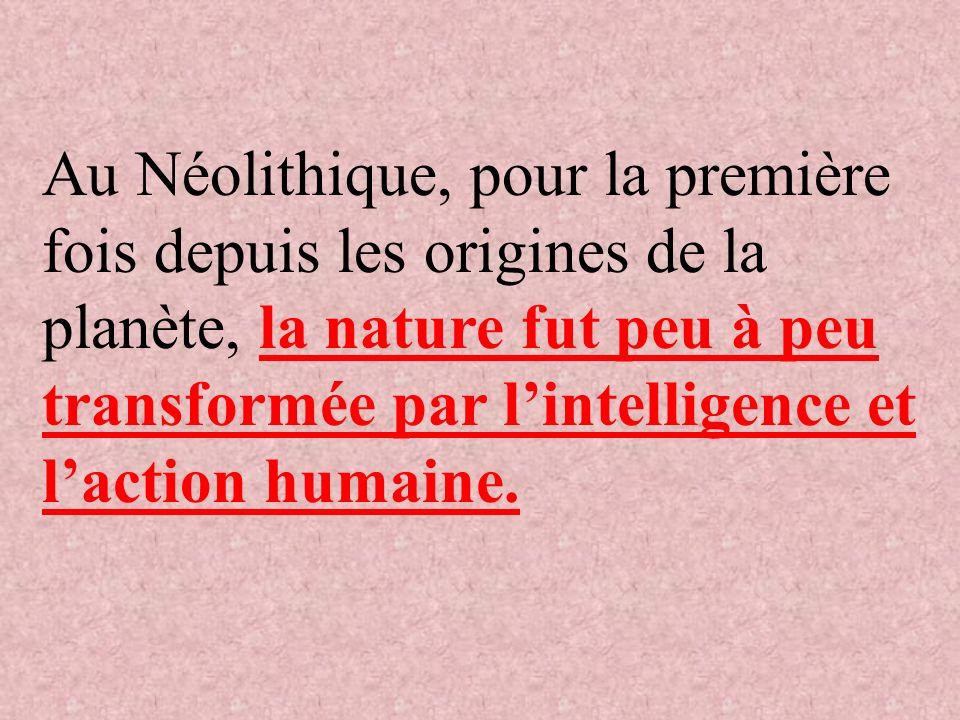 Au Néolithique, pour la première fois depuis les origines de la planète, la nature fut peu à peu transformée par l'intelligence et l'action humaine.
