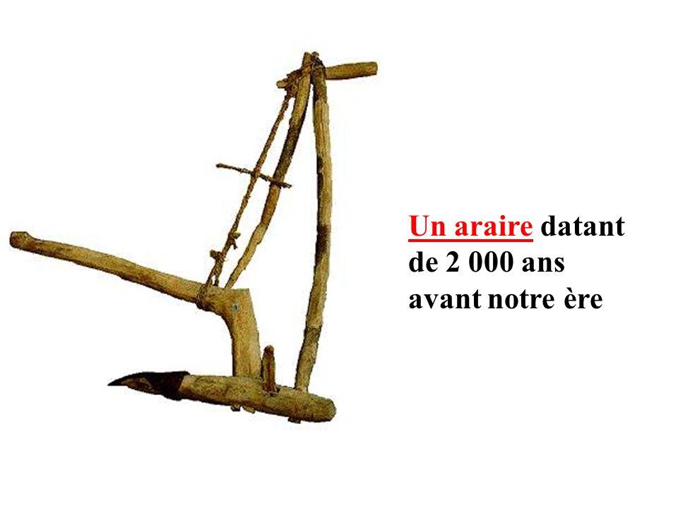 Un araire datant de 2 000 ans avant notre ère