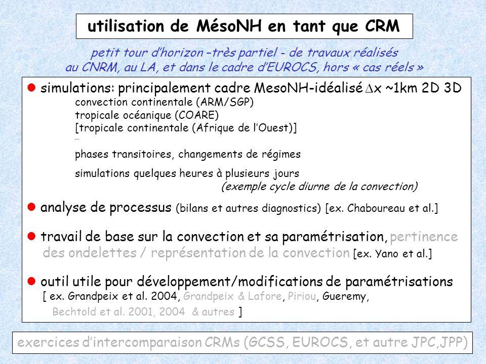 utilisation de MésoNH en tant que CRM
