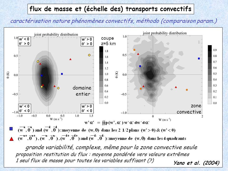 flux de masse et (échelle des) transports convectifs