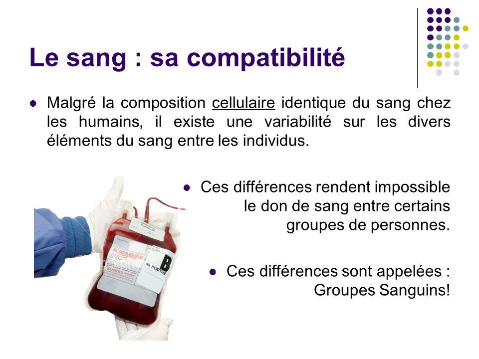 Le sang : sa compatibilité