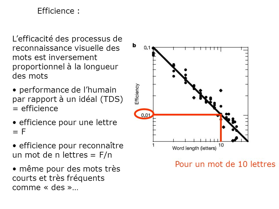 Efficience : L'efficacité des processus de reconnaissance visuelle des mots est inversement proportionnel à la longueur des mots.