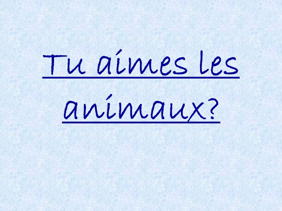 Tu aimes les animaux