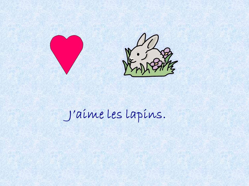 J'aime les lapins.