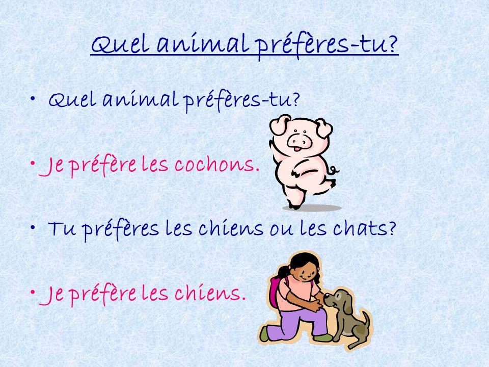 Quel animal préfères-tu