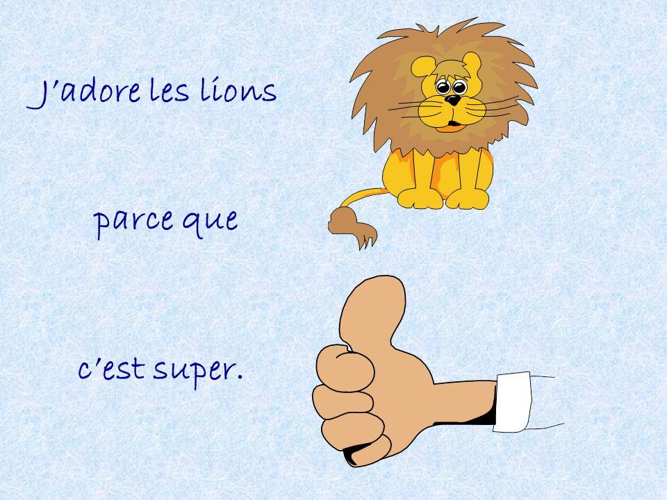 J'adore les lions parce que c'est super.