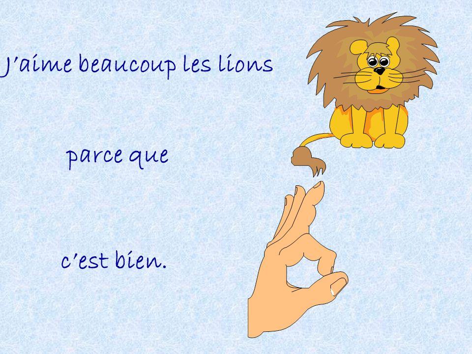 J'aime beaucoup les lions