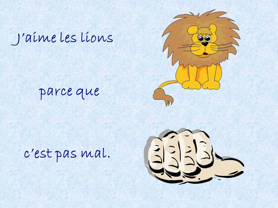 J'aime les lions parce que c'est pas mal.