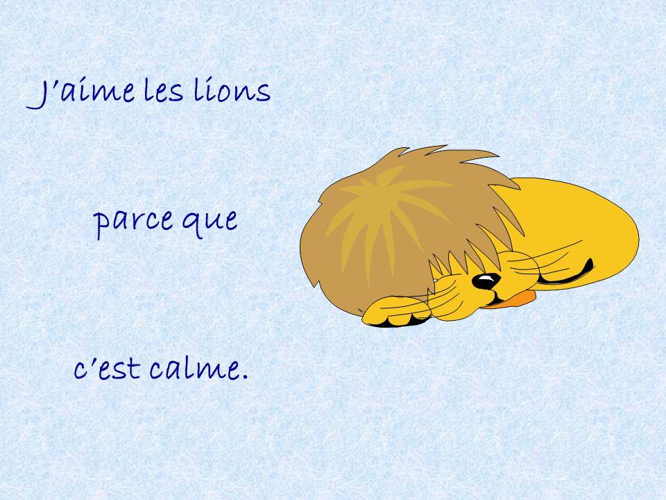 J'aime les lions parce que c'est calme.