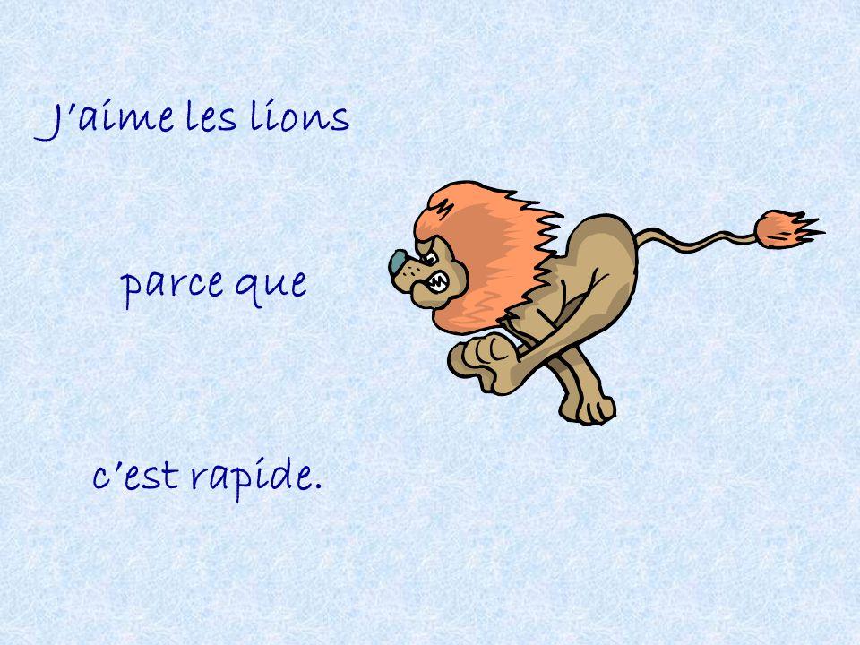 J'aime les lions parce que c'est rapide.