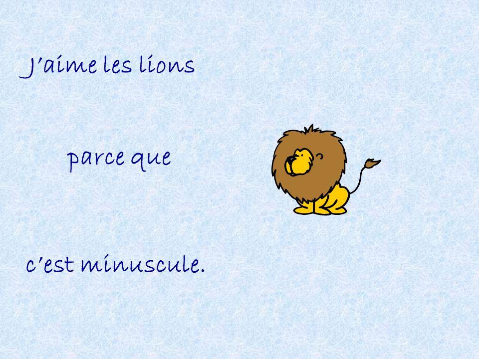 J'aime les lions parce que c'est minuscule.