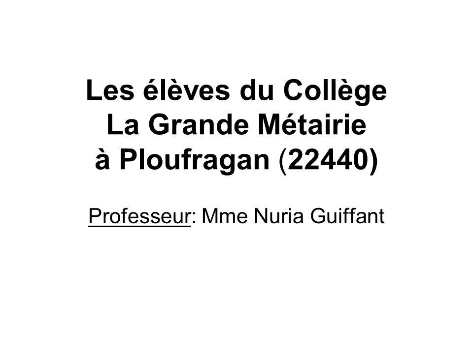 Les élèves du Collège La Grande Métairie à Ploufragan (22440)