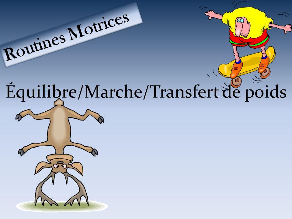 Équilibre/Marche/Transfert de poids