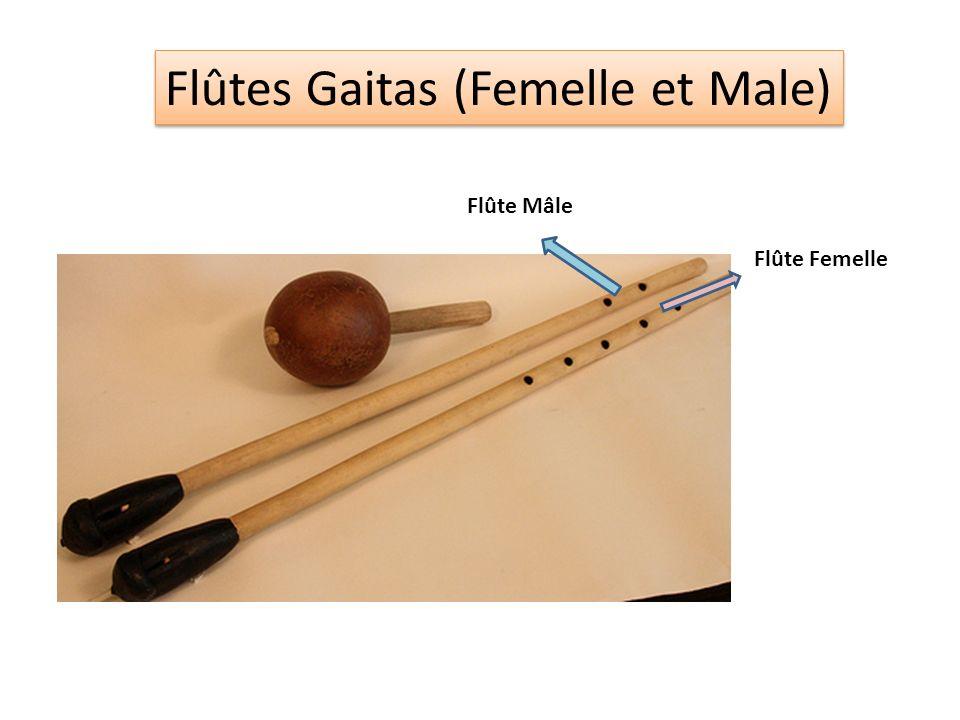Flûtes Gaitas (Femelle et Male)